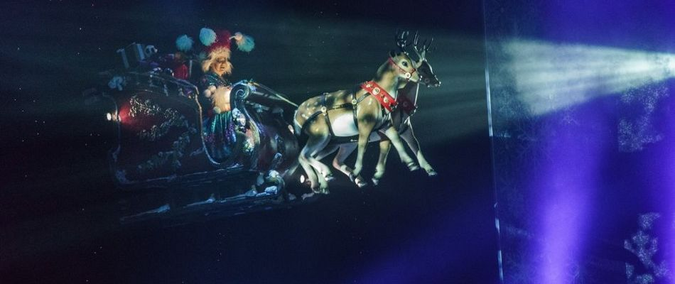 Flying Sleigh & animatronic reindeer - special effects props